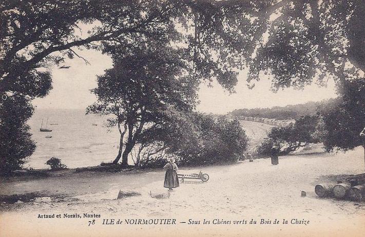 Sous-les-chênes-verts-du-Bois-de-la-Chaize