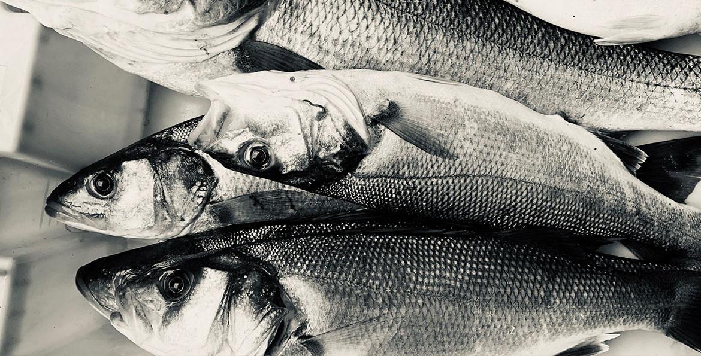 poisson-potiniere